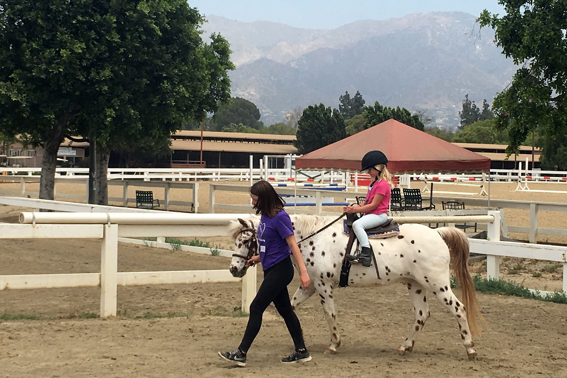 TraditionalEquestrianSchool2