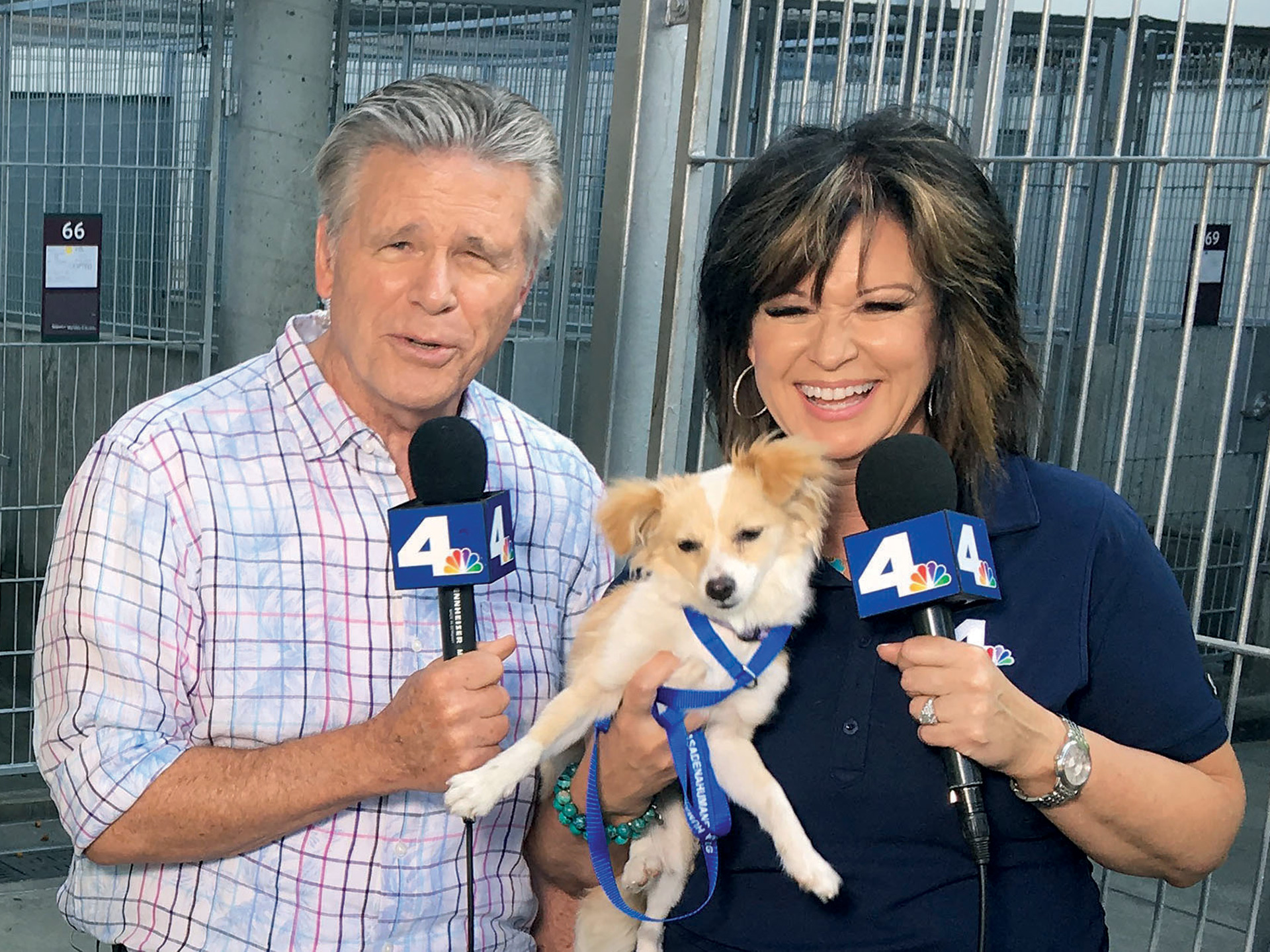 local-anchors-help-clear-the-shelters-4-nbc4-anchors-chuck-henry-colleen-williams